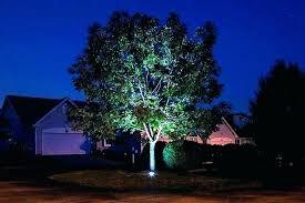 Landscape Lighting Ideas Trees Tree Landscape Lights Mreza Club