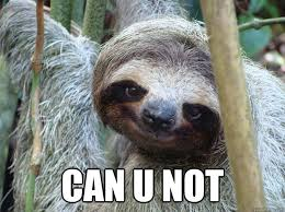 Can You Not Meme - can u not foul bachelor sloth quickmeme