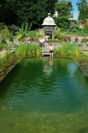 Natural Swimming Pool The Principle Of The Natural Swimming Pool Lies In The