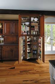 kitchen cabinet pantries 16 best pantries images on pinterest organized kitchen kitchen