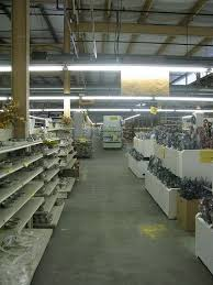 Pottery Barn Outlet Williamsburg Va 17 Best Williamsburg Pottery Images On Pinterest 50 States Old