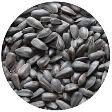 weebner u0027s wild bird seed and supplies