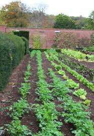 barley wood walled garden the foodie travel guide