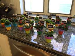 flower pot favors small flower pots bridal shower favors baby shower favors