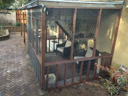 building a catio u2014 learning to love cats and keeping them happy