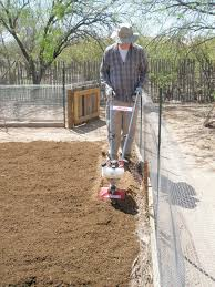 growing veggies in the sonoran desert preparing the soil