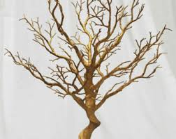 manzanita tree branches manzanita tree etsy