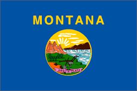 Coolest State Flags Montana Is The Best State In America The Washington Post