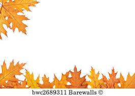 339 ornamental fringe posters and prints barewalls