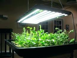 grow lights for indoor herb garden herb grow light indoor herb garden grow lights 2fl me
