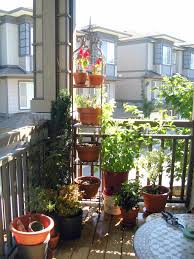 container vegetable gardening ideas in tiny spaces 10 tips