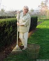 winterizing your garden martha stewart