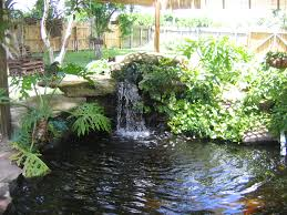 beautiful backyard landscape ideas completed with small pond and