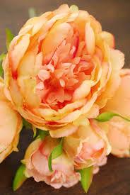 Peonies Bouquet Orange Peony Bouquet