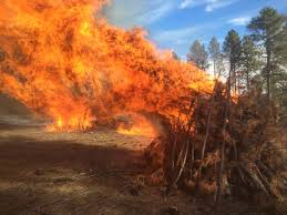 Wildfire Williams Arizona by Pile Burns On Tusayan And Williams Ranger Districts Jan 5 And 6