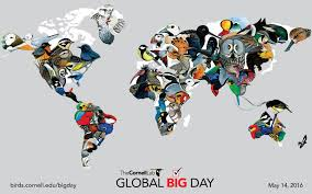gear up for global big day u2013 cool green science