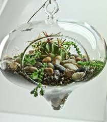 awesome glass terrarium globes 23 hanging glass terrarium globes