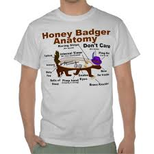 21 best honey badger don u0027t care images on pinterest don u0027t care