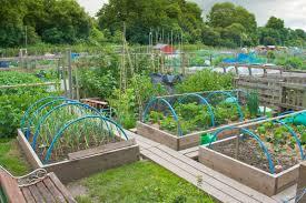 Small Kitchen Garden Ideas Triyae Com U003d Backyard Vegetable Garden Design Ideas Various