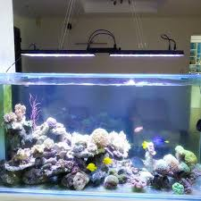 led aquarium lights for reef tanks dsuny dimmable marine aquarium led lighting coral reef saltwater
