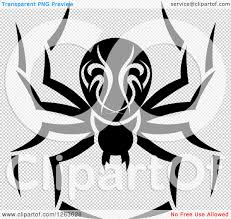 spider transparent background clipart of a black and white spider royalty free vector