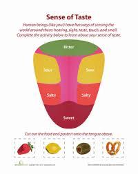 5 senses taste matching worksheet education com