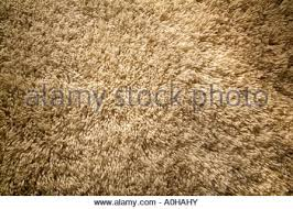 chunky shag texture tan buff brown thick pile modern carpet rug