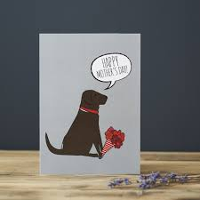 chocolate labrador mother u0027s day card 2 75 mischievous mutts