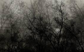 download wallpaper 3840x2400 trees branches dark night ultra hd
