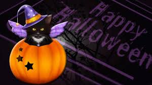 halloween black cat wallpaper cat halloween wallpaper collection