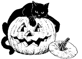 coloring page black cat on pumpkin img 16556