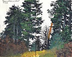 douglas fir tree pine and fir tree forest painting by martin stankewitz