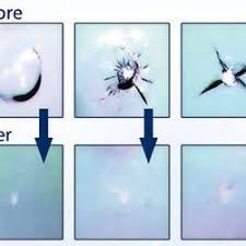 repair glass bullseye glass repair auto repair san mateo ca phone number