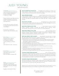 Data Administrator Resume Data Center Administrator Resume Free Resume Example And Writing