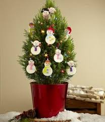 Decorate Christmas Tree Online by Decorating Home Interiors Catalog Online Christmas Lights For
