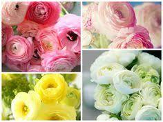 Wedding Flowers Queenstown Queenstown Bridal Bouquet Larsson Photography Wedding Flowers