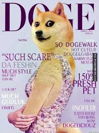 Doge Meme Pronunciation - 13 best doge images on pinterest doge meme dankest memes and
