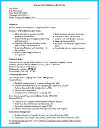 resume templates professional profile exle data entry analyst resume therpgmovie