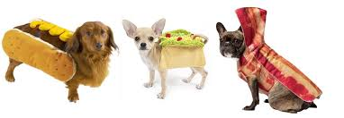 Halloween Costumes For Dogs Dog Halloween Costumes