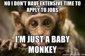 Baby Monkey Meme - baby monkey graduating college meme imgur