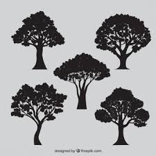 trees vectors photos and psd files free