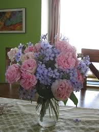 Putting Roses In A Vase Arrowhead Alpines Blog The Best Smelling Rose In The World
