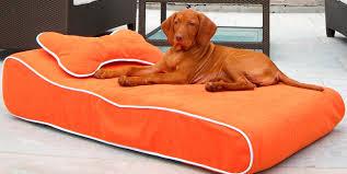 Sofas And Armchairs Uk Sofa Dog Sofas And Chairs Compelling Dog Sofas And Chairs Uk