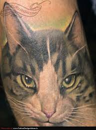 cat portrait tattoo design tatto cat and dog pinterest cat