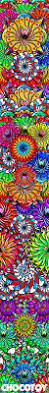 1079 best colors multi images on pinterest colors bright
