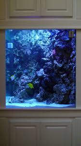 Beautiful Home Fish Tanks by Most Beautiful Saltwater Fish Tanks All Time Ratemyfishtank Com