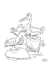 pelicans coloring free printable coloring pages