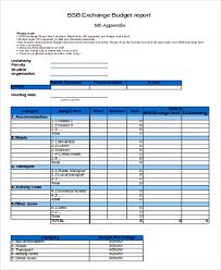 9 sample budget report templates free u0026 premium templates