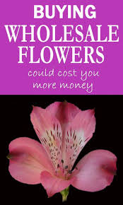 wholesale flowers online 18 best cheap bulk flowers images on florist supplies