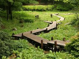 best 25 wooden walkways ideas on pinterest pallet walkway wood